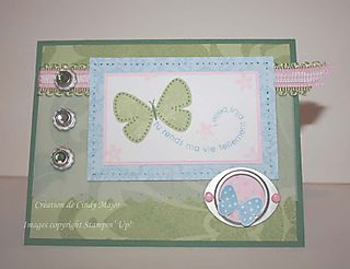Papillon céleri et jardin_Cindy Major