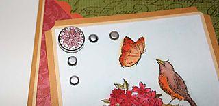 Carte Serenite printaniere carres festonnes mandarine_close up
