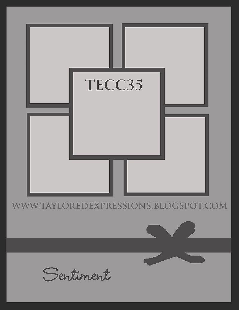 TECC35_(sketch)