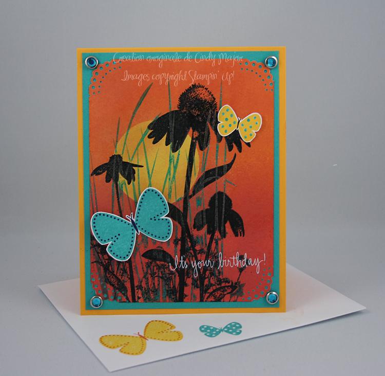 Coucher de soleil et papillons