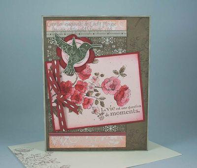 Carte Hummindbird Blush Thyme Cranberry