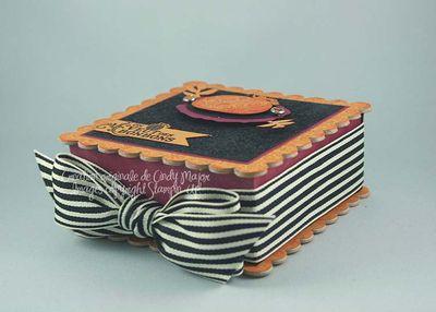 Paisley Prints Halloween Box 1