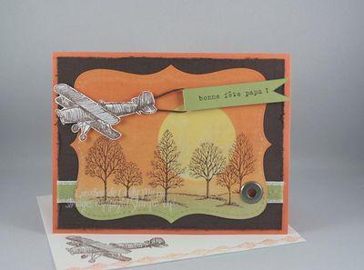Carte Avion et baniere