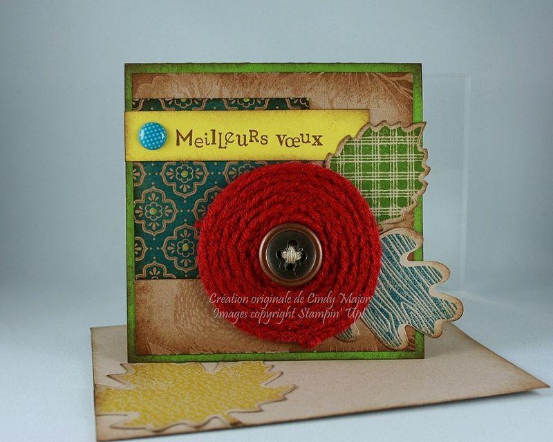Carte Fleur en tricotin