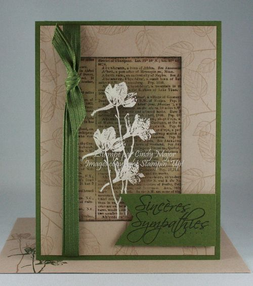 Dictionary_More Petal Prints_Cindy Major