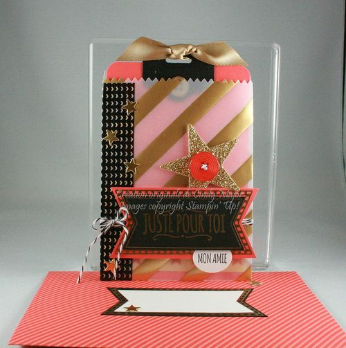 Mini Treat Bag Framelits_Fancy Foil Designer Vellum_Cindy Major