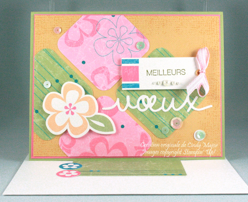 Island Blossoms SS Kit_Holly Jolly Greetings_Cindy Major