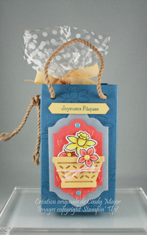 Daffodil and Spring Flower Basket Gift Bag_Cindy Major