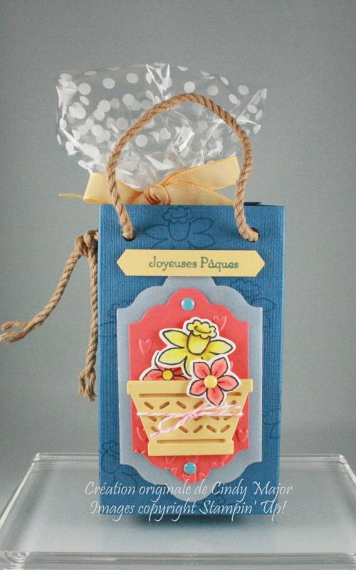Daffodil and Spring Flower Basket Gift Bag_Cindy Major