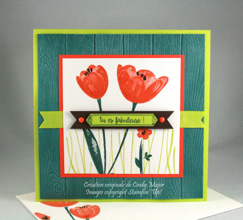Tranquil Tulips_Pinewood Planks EF_Cindy Major