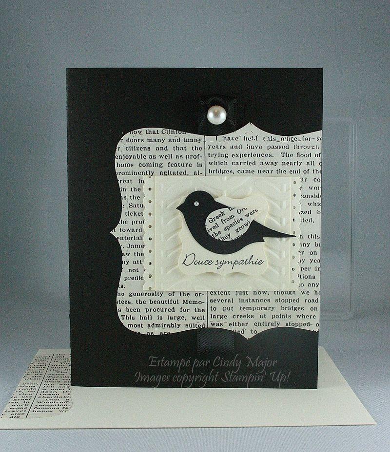 Teeny Tiny Wishes_Typeset_Bird_Cindy Major