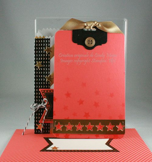 Mini Treat Bag Framelits_Fancy Foil Designer Vellum_Cindy Major_inside