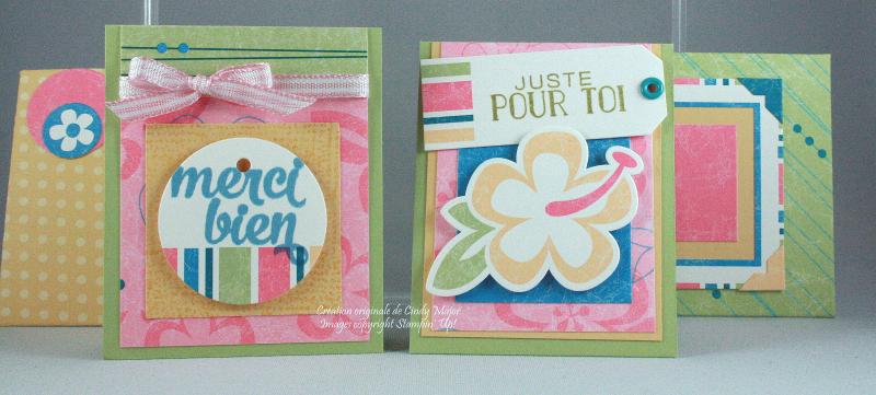 Island Blossoms Mini Cards_Cindy Major