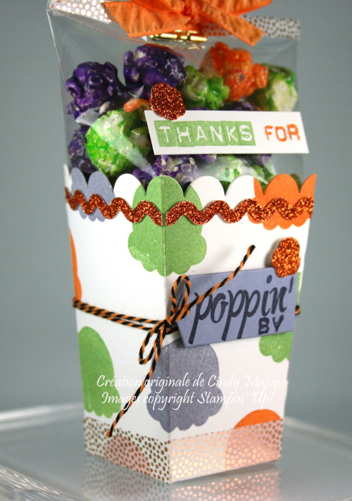 Popcorn Box Thanks for poppin by_cindy Major_close up 3