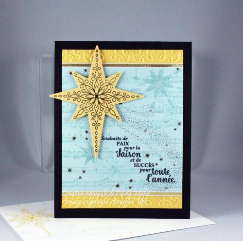 Star of Light_Sheet Music_Garden Trellis EF_Cindy Major