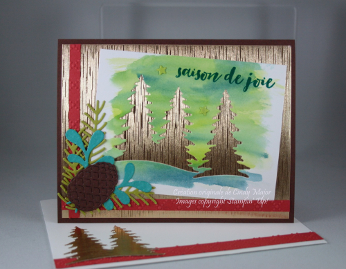 Card Front Builder Framelits_Golden Satin Tonic_Cindy Major