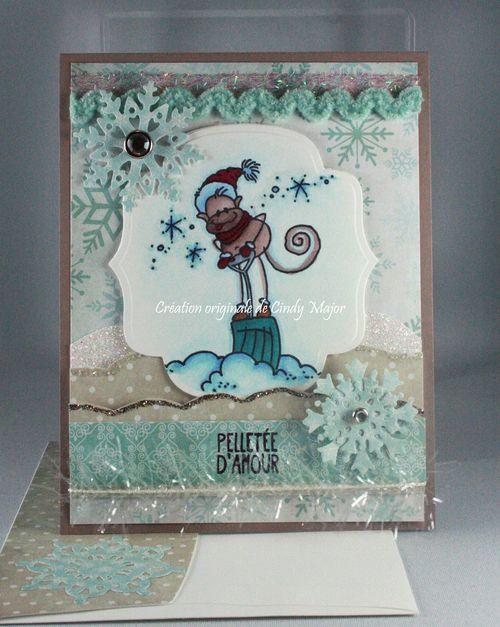 Changito Shovel_Winter Frost_Etiquetage_Cindy Major