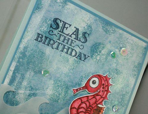 Seas the Birthday_Cindy Major_close up