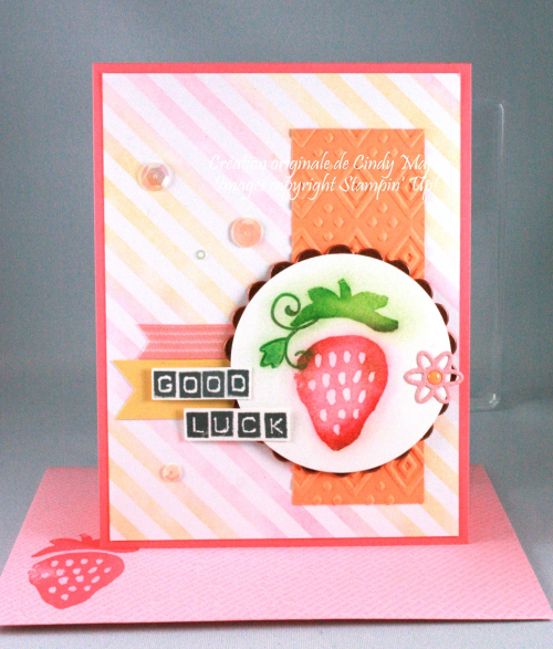 Fresh Fruit_Labeler Alphabet_Cindy Major