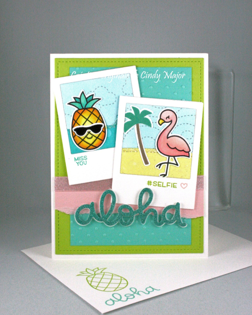 Selfie Frames_Aloha_Flamingo Together_Cindy Major