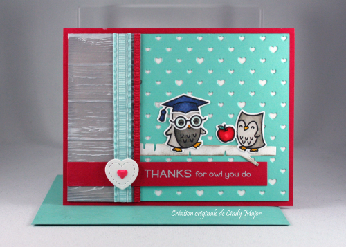 So Owlsome_Polka Heart Backdrop_Cindy Major