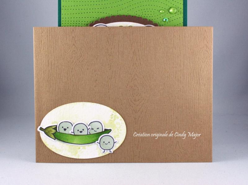 Be Hap-pea_Stitched Woodgrain Backdrop_Cindy Major_Envelope