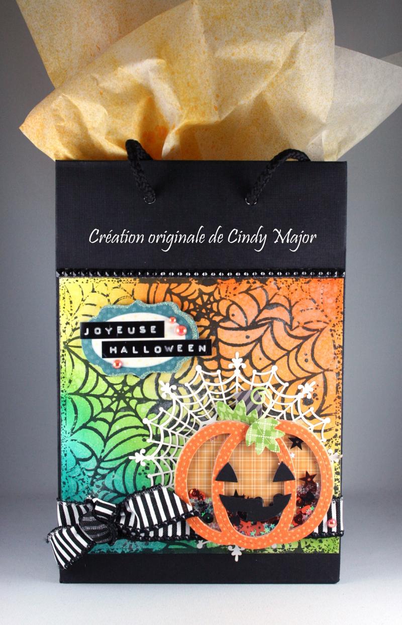 Stitched Pumpkin Frame_Spooky Spiderwebs_Cindy Major