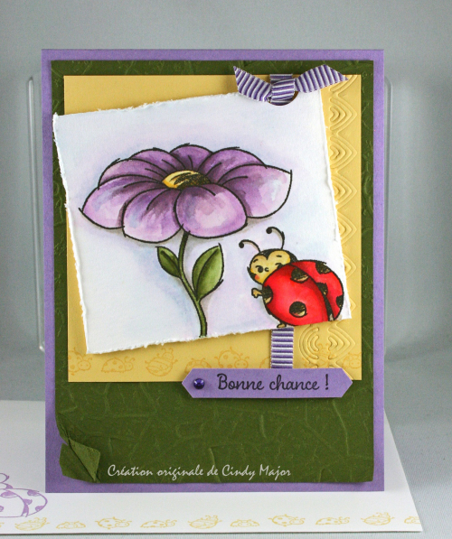 Little Ladybug_Stone EF_Cindy Major