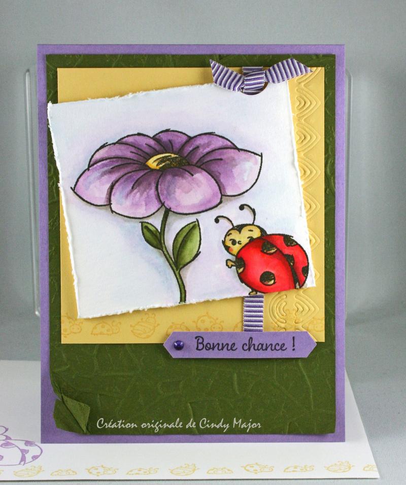 Little Ladybug_Stone EF_Cindy Major