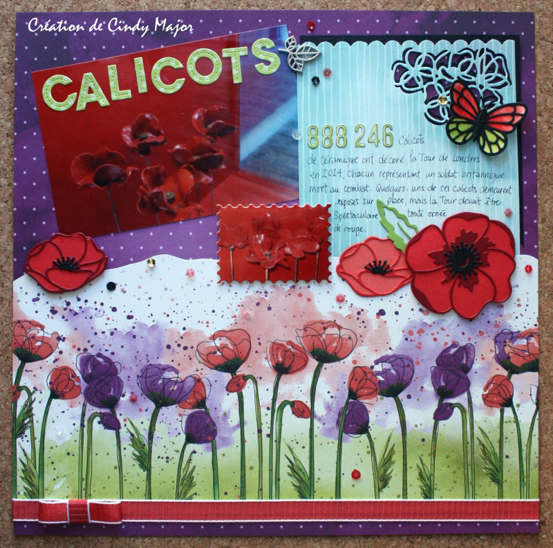 Calicots