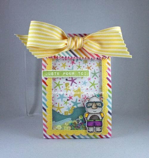 Summer Shaker Gift Bag_Cindy Major_2