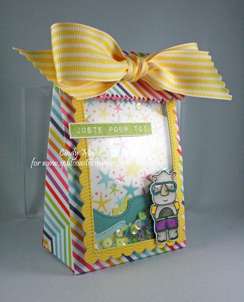 Summer Shaker Gift Bag_Cindy Major