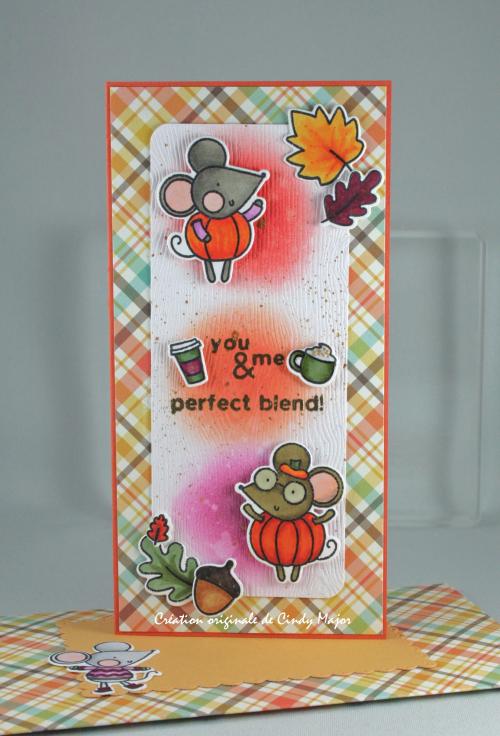 Hello Pumpkin_Perfectly Plaid Fall_Cindy Major