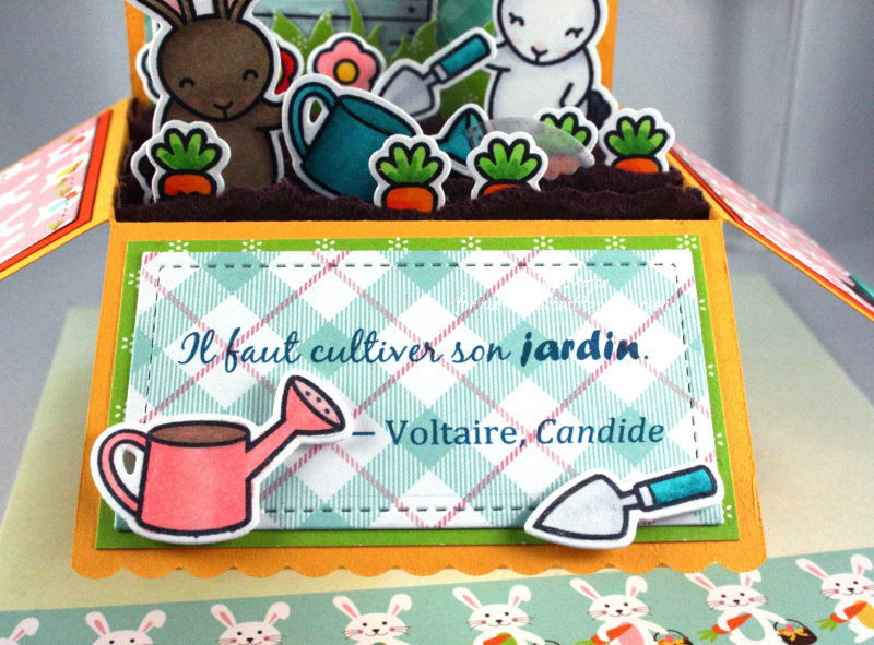 Some Bunny_Scalloped Pop-Up Box_Hello Easter_Cindy Major_close up