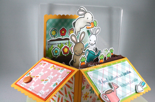 Some Bunny_Scalloped Pop-Up Box_Hello Easter_Cindy Major