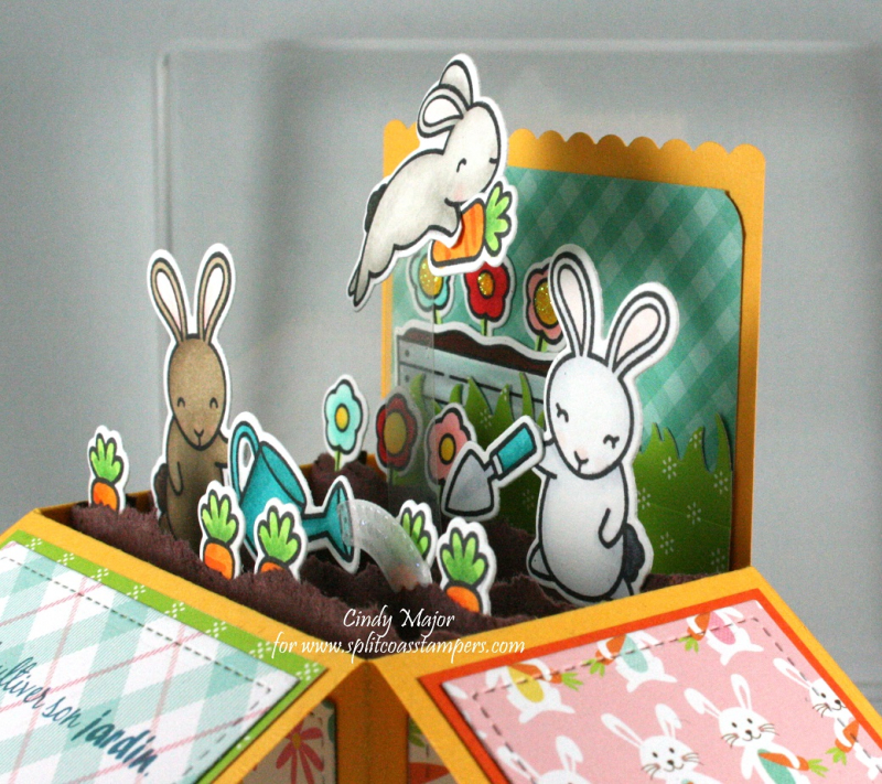 Some Bunny_Scalloped Pop-Up Box_Hello Easter_Cindy Major_side 2