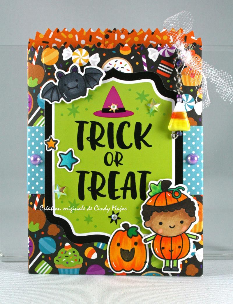Pumpkin Party Pockets_Cindy Major_1