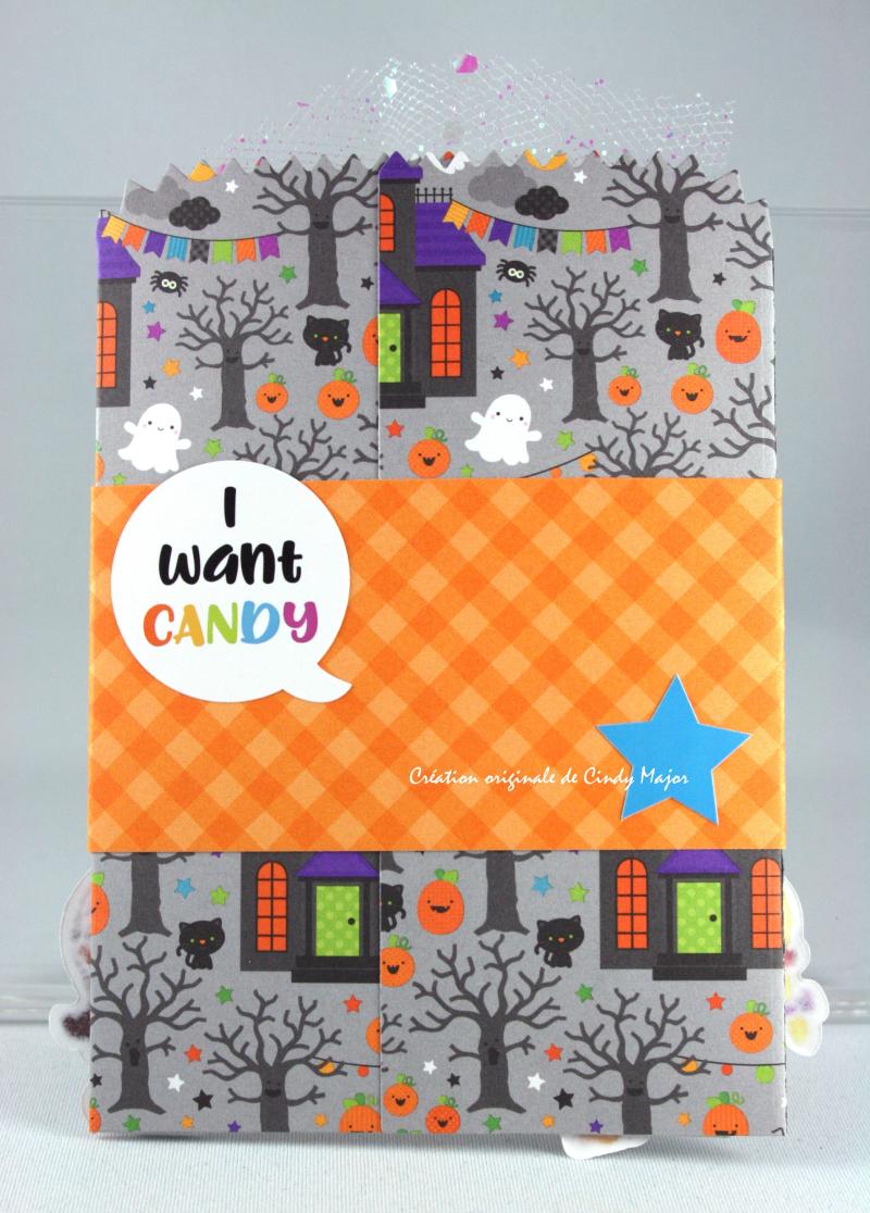 Pumpkin Party Pockets_Cindy Major_3