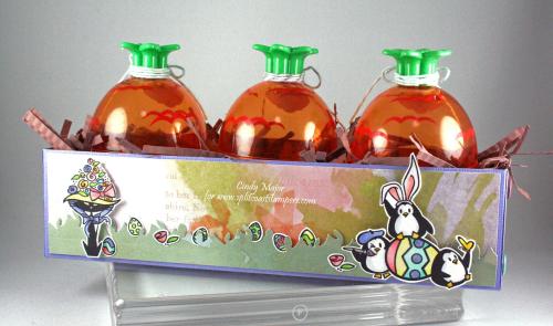 Carrot Planter_backside